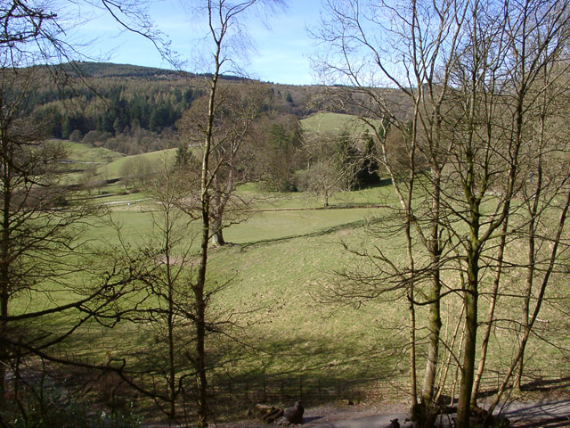 View from Ridding Wood, Grizedale Forest