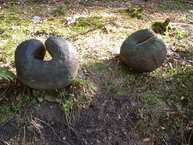 """Spores"", Grizedale Forest sculpture"