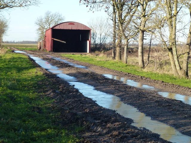 Grange Farm near Stretham Ferry Bridge