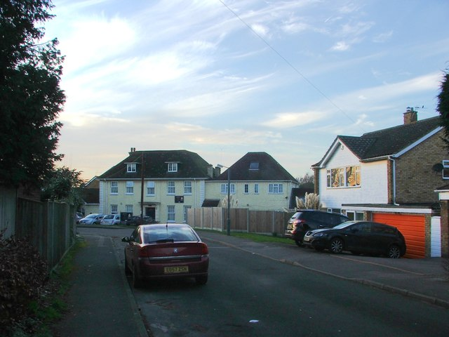Rushmead Drive Loose Chris Whippet Geograph Britain