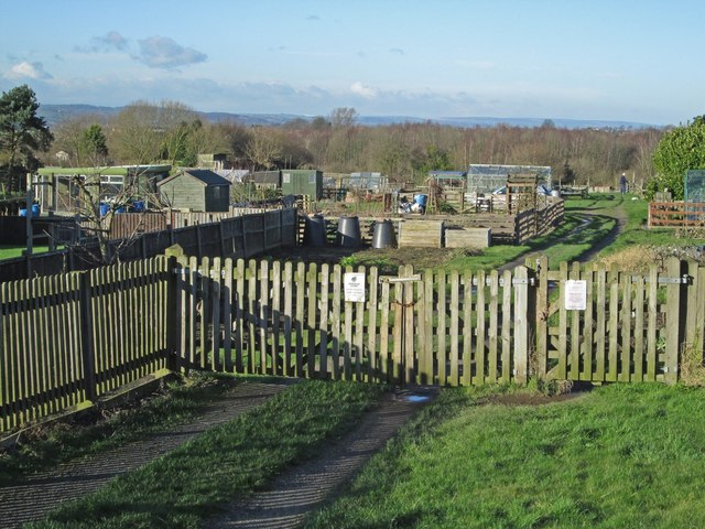 Newton - Littlemoor Lane Allotments