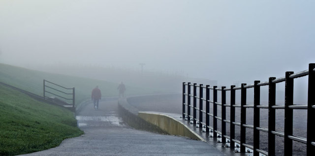 Coastal mist, Seapark, Holywood - January 2016(1)