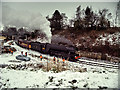 SD8010 : Flying Scotsman at Bury, January 2016 (Scotsman in Steam Weekend) : Week 3