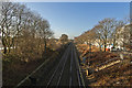 SJ5679 : The railway line at Whitehouse by Ian Greig