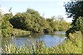 SU4667 : Kennet & Avon Canal by N Chadwick