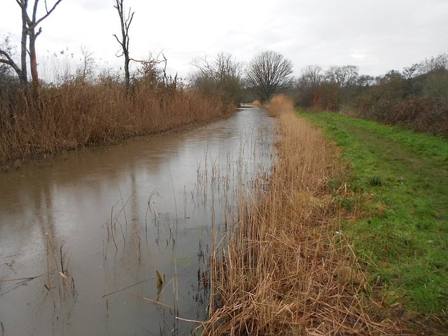Wey and Arun Canal: Restored section near Drungewick Manor