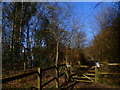 TQ1331 : Bridleway called Cook's Lane goes north by Shazz