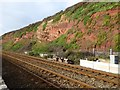 SX9777 : Strata in the sandstone cliffs east of Dawlish by David Smith