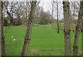 TQ2062 : Horton Park golf club by Hugh Venables