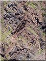 SS2327 : Rock Strata at Barley Bay in Devon by Roger  Kidd