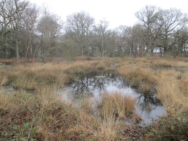Hertford Heath Nature Reserve Parking