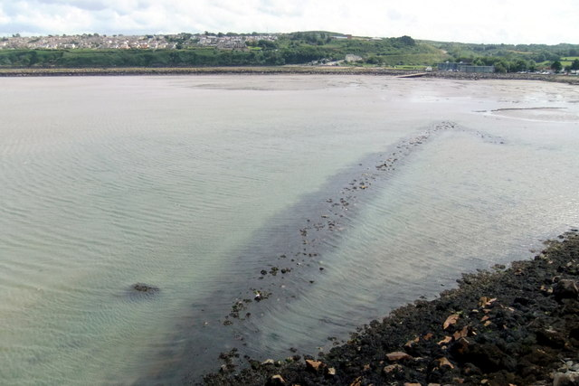 The NW fish trap in Fishguard Harbour (3)