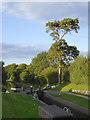 SJ6542 : Audlem Locks No 7, Cheshire by Roger  Kidd