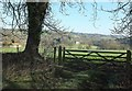 ST7359 : Gate with a view to Combe Hay by Derek Harper