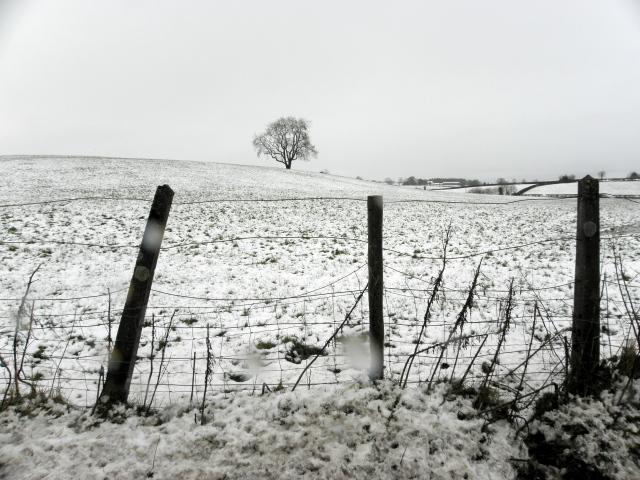 Snow, Gortnacreagh