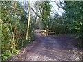 "TQ1628 : Byway ""Green Lane"" turns south at Home Wood by Shazz"