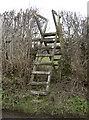 ST6465 : Over the top stile by Neil Owen