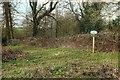 ST7659 : Path junction near Hogwood Lodge by Derek Harper