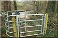 ST7659 : Kissing gate near Hogwood Lodge by Derek Harper