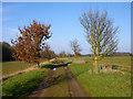 TL1543 : Farm track by Robin Webster