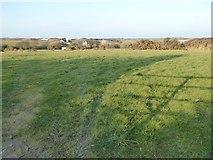 SW8972 : Farmland above Tregavone Farm by Philip Halling