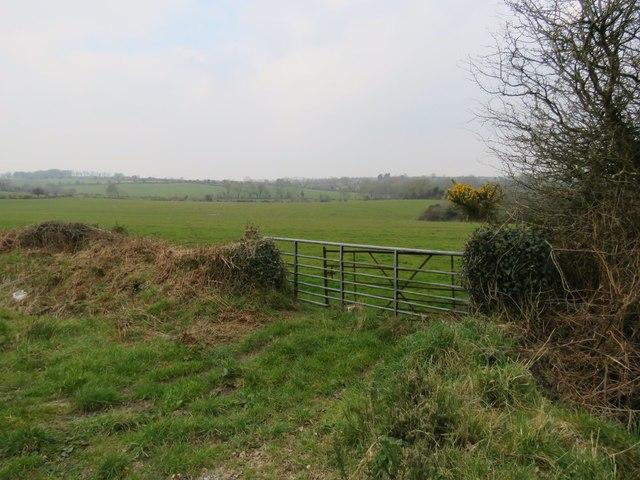 Fields near Ballinacurra