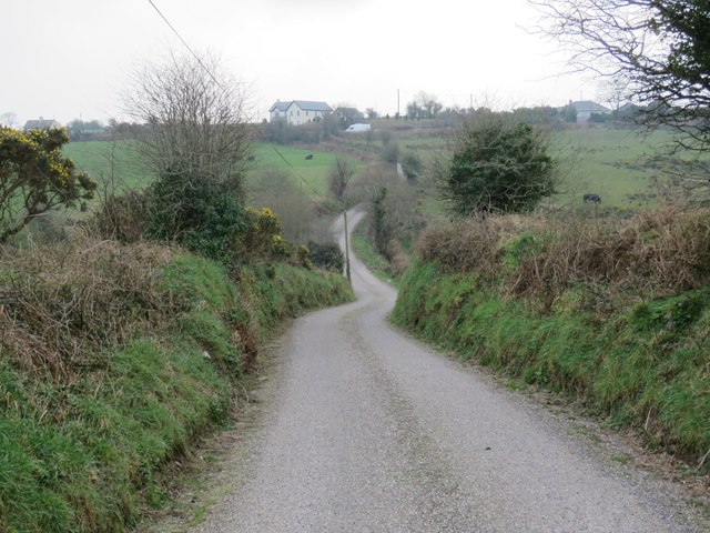 Country road near Kilnagnangy