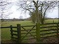 TQ1928 : Bridleway enters field with pylon ahead by Shazz
