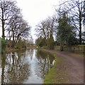 SJ5784 : Bridgewater Canal by Gerald England