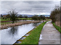 SD7808 : Canal Towpath Between Radcliffe and Bury by David Dixon