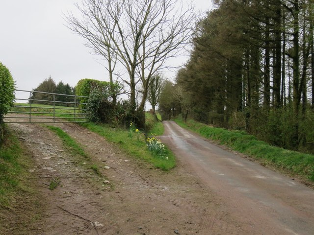 Country road near Balinlining