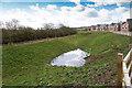 SP2754 : Drainage pond off Copeland Avenue by David P Howard