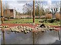 SD4214 : Martin Mere Wetland Centre by David Dixon