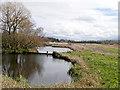 SD4214 : Martin Mere Wetlands Centre by David Dixon