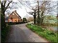 TQ8246 : Tong Lane, near Headcorn : Week 15