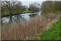 TL0999 : The River Nene near Sutton by Mat Fascione