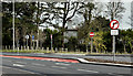 J3784 : Bus lane, Greenisland - April 2016(1) by Albert Bridge