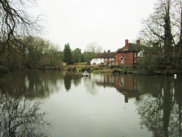 Brattle Mill Pond