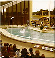 TL0017 : The Sea Lion Arena in Whipsnade Zoo by Elliott Simpson