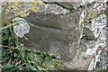 SY6482 : Benchmark on Higher Barn near Buckland Ripers by Becky Williamson