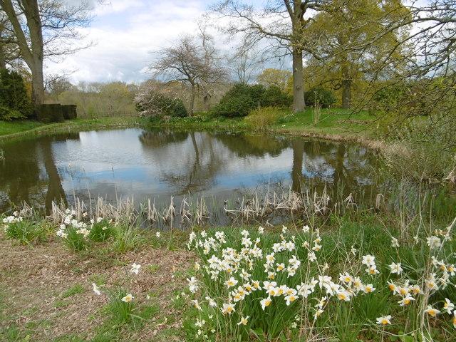Egg pond hole park gardens marathon geograph britain for Garden pond kent
