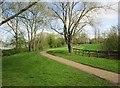 SP7033 : Bernwood Jubilee Way in Bourton Park, Buckingham by P L Chadwick