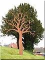 SO0661 : Tree Sculpture, Llandrindod Hospital : Week 16