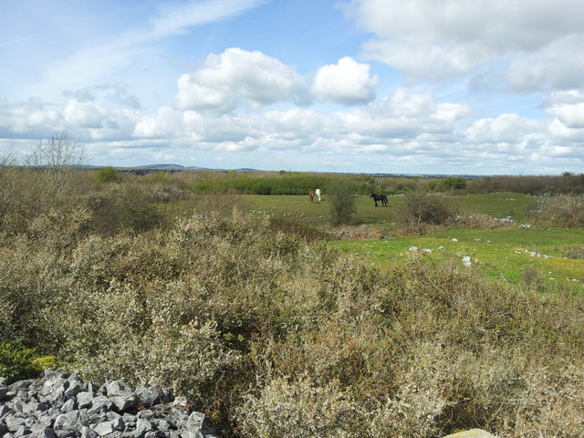 Site of the Battle of Knockdoe  1504