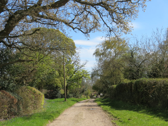 The Road from Hastoe Farm to Hastoe Grove
