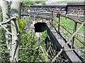 SE2137 : Footpath, River Aire, Calverley, Leeds by Mark Stevenson