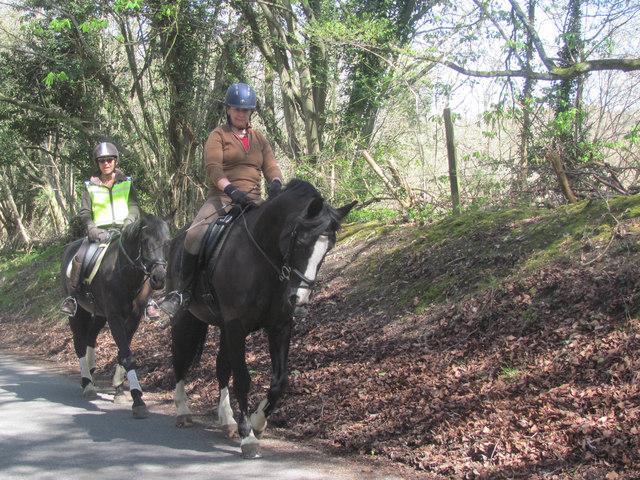 Riding Horses up Hastoe Hill