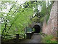 NJ2844 : The Speyside Way passes through a disused railway tunnel by Tim Glover