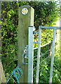 ST4251 : Chained gate, Brinscombe Hill by Derek Harper