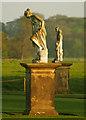 TA1836 : Statues at Burton Constable : Week 19